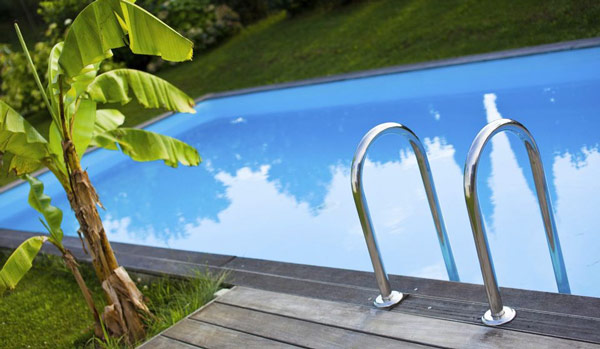 what to plant around a swimming pool